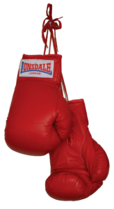 online marketing coach boxing gloves cropped